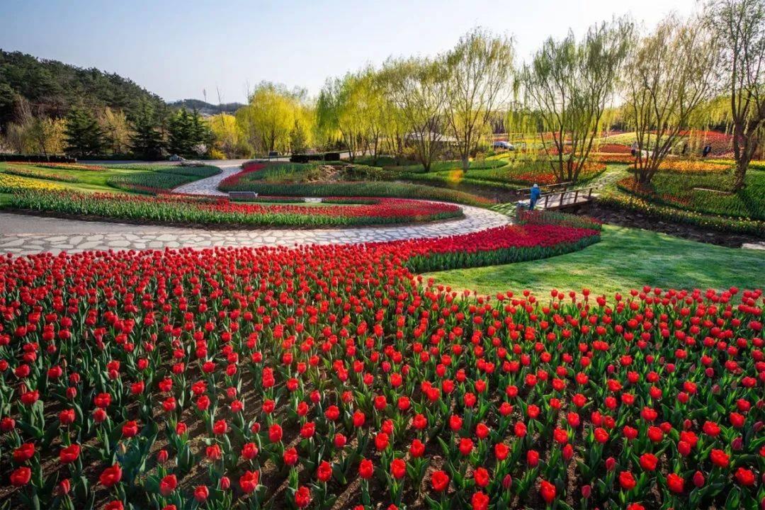 大连春天十条最美旅游线路发布!