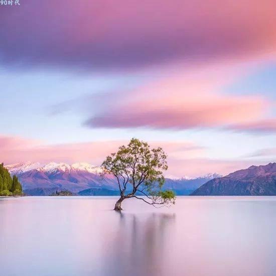 头像  风景花朵图片 漂亮的大自然风景,给与你好运
